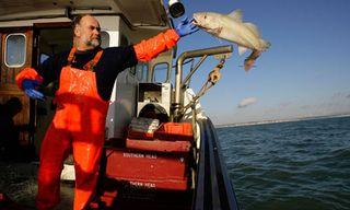 EU-fisheries-ministers-po-007